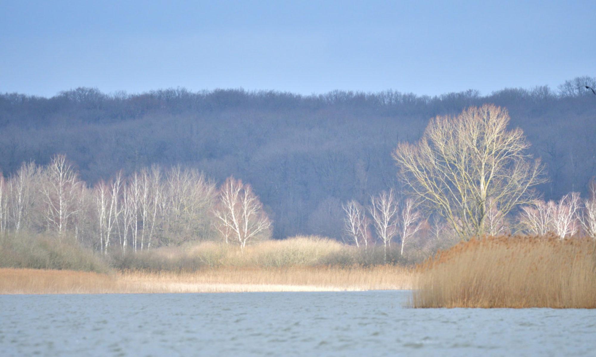 Images du Saulnois,pays des étangs